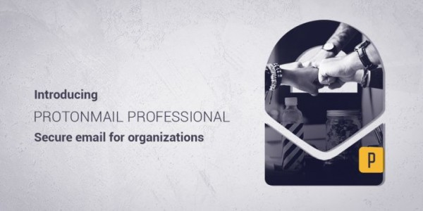 ProtonMail-Professional