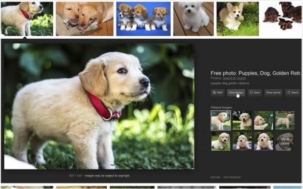 Ver-Imagem-Google